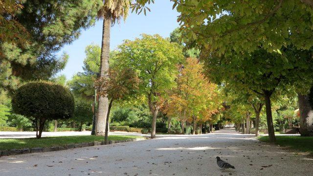 Kifissia Park community centre parkland