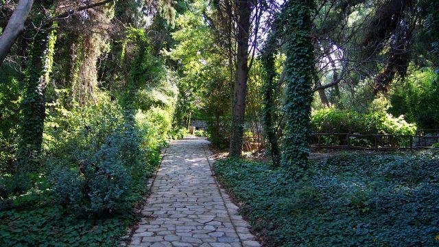 Diomedous Botanical Gardens Chaidari