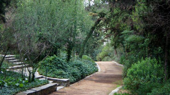 Diomedous Botanical Gardens