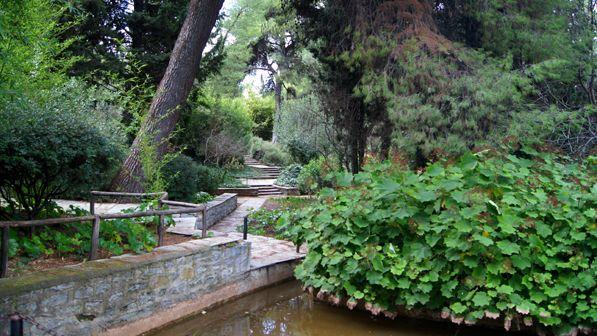 Diomedous Botanical Gardens lake