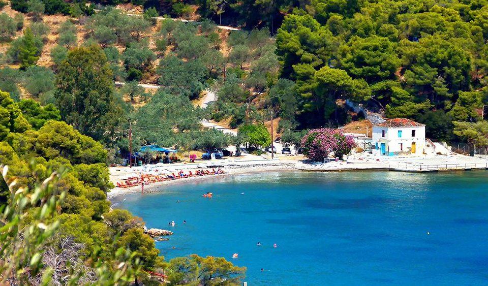 beach, nature, sea, vacationers, bay