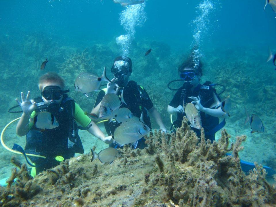 Region_of_Attica_Kythera-Diving